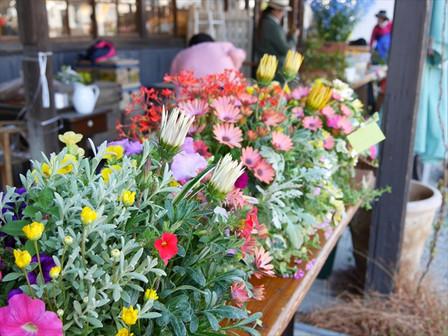 バスケットの花々
