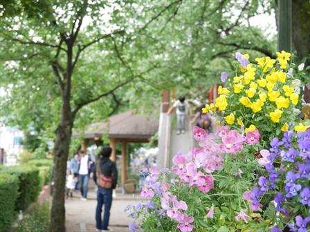 ひかり公園と花