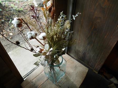 綿の花たち